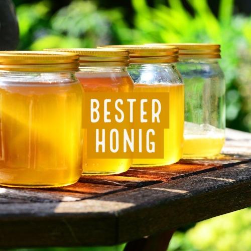 Bester Honig