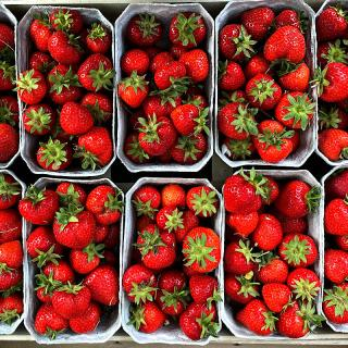 Erdbeeren Schale 500g